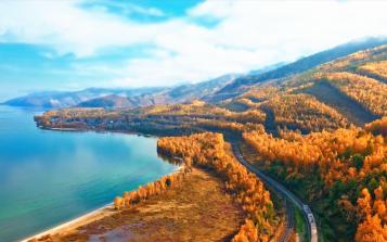 创新驱动 西伯利亚白桦茸引领行业高质量发展