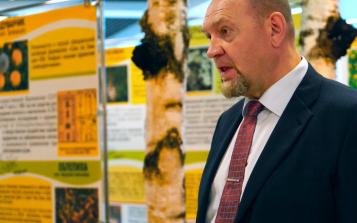 原料溯源及精制工艺,俄罗斯专家支招白桦茸品质鉴别
