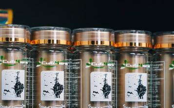 岁末消费高潮来临,如何买到正宗西伯利亚白桦茸?