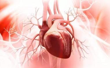 如何及时发现心血管病?对照5个预警信号自查,注意两点!