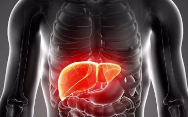 肝受损,全身功能都受伤!这些信号提示肝不好