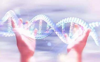 癌症越治越多?对大自然的过度干预、不良生活方式是主因