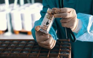 如何引导白桦茸行业健康发展?这个地方卫健委出手了!