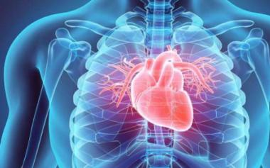 这8个症状出现,或是你的心血管不通了!夏季如何预防?