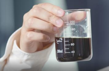 养生经济进入下半场 西伯利亚白桦茸引领药用真菌率先启航
