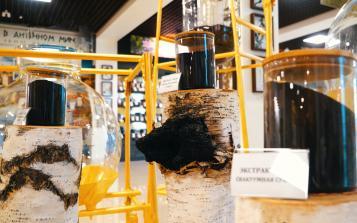 不同年限的西伯利亚白桦茸精华,质量有什么差别?