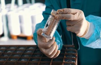 野生资源,生长期长达15年...如何让白桦茸的价值最大化?