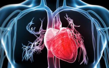 春季血压易升高脑梗多发!高血压患者如何做好日常预防?